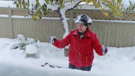 卡城媚家雪景