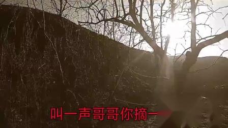 绥德县石角村宣传片