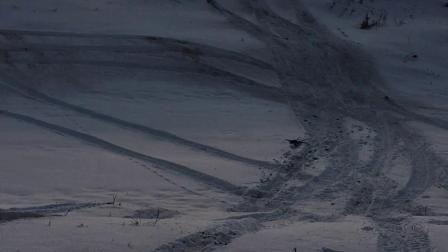 东北小伙伴一起雪地冒险