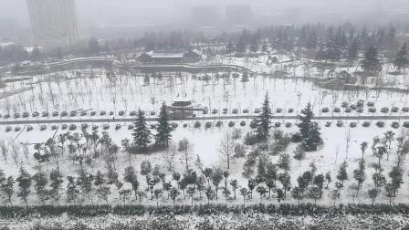 2020.1.6第二天雪