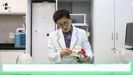 韩国H整形医院-颧骨手术内推术周边的解剖学-下