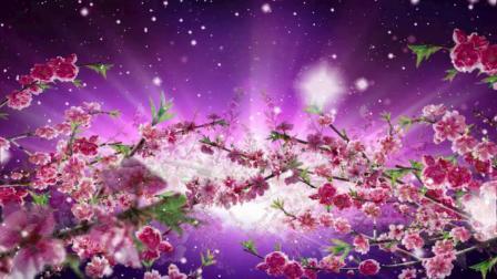 古诗新说唱《春》