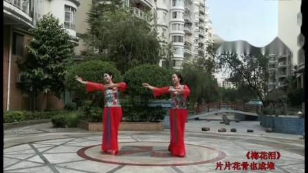 绿叶子广场舞《梅花泪》双人舞