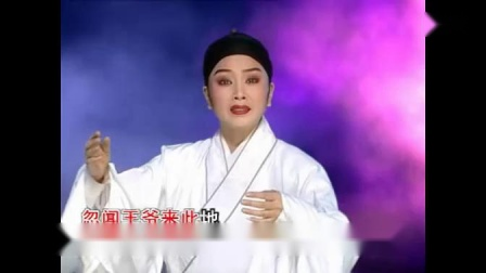 421 潮剧视频-一腔怨气恨难平-选段 林燕云 林武燕