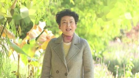 著名古筝表演艺术家李志美通过中国推介网向全国人民拜年
