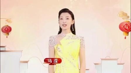 安徽卫视2020年版ID春节宣传片2