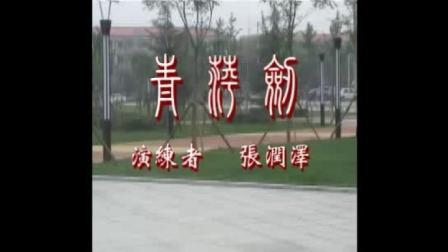 贾氏青萍剑2013第六路(正)二龙吐须
