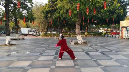 陈式49式太极剑(陈露芬)