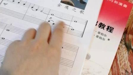 网课 赵金霖  课程与乐理《金鹰之歌》