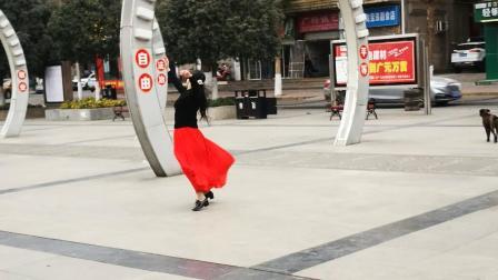女子单舞华尔兹