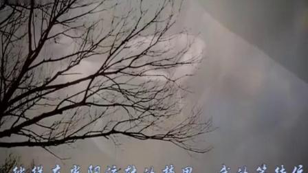 云中月圆 向明树次中音萨克斯演奏