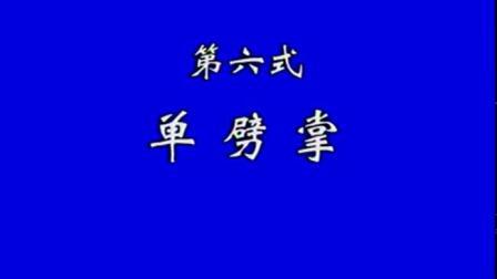 10.连手短打实战《释德君》《少林传统功夫系列》