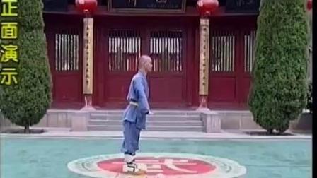 28.少林七星螳螂拳-白猿献书《释德君》《少林传统功夫系列》