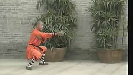 少林五形十六法《释德慈》《中国少林真功夫系列》