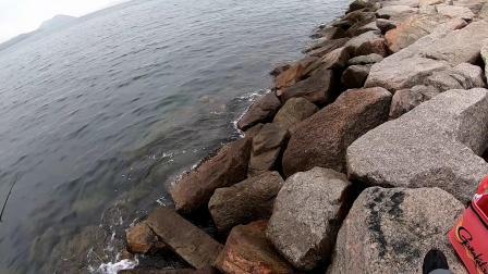 矶钓 | 2020.03.07 回到防波堤,继续练习全游动