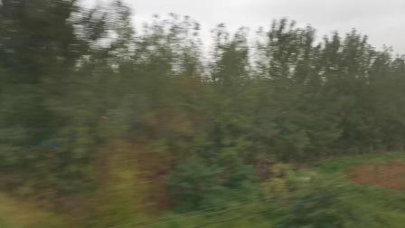 20191004 155501 京广高铁G87次列车与G4京港澳高速并行