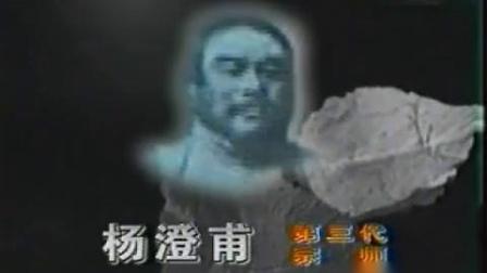 陈微明弟子林炳尧先生演示杨式太极拳