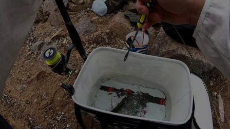 矶钓小工具 | 个人用过效率最高的解鈎器