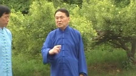 传统形意拳实战演练名家高银鹤老师教学