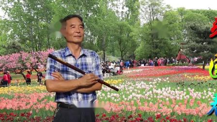 枣园春色 笛子演奏杨兴义
