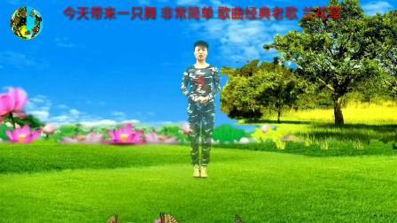 兰兰广场舞【兰花草】原创双人水兵舞附教学2020年3月23号