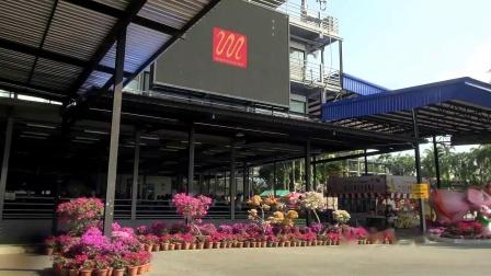 1【泰国旅游东芭乐园名车 泰国皇室】文奎影院20220325