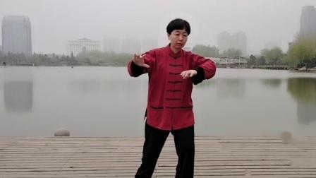 雨蒙蒙龙湖旁边舞太极
