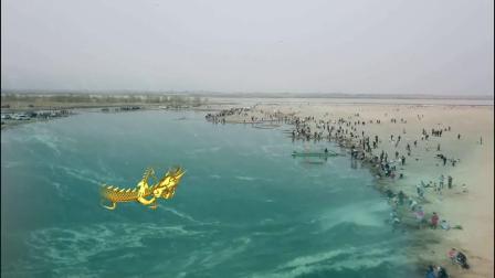 黄河滩上神龙会师