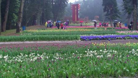 放逐心情的旅途    厦门万石植物花卉园看花
