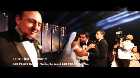 埃及 Pro VISION 婚庆
