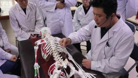 内热针大课堂第九十五期:荣贺内热针治疗腰椎视频一.MP4