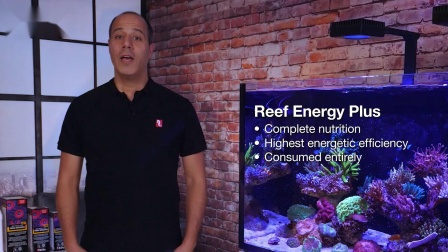 红海ReefEnergyPlus珊瑚能量剂-红海见解