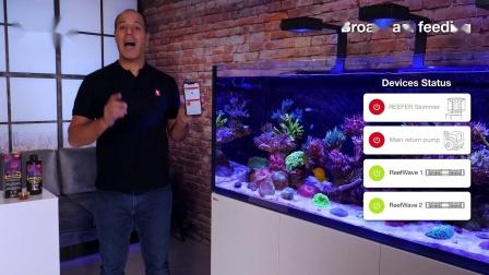 红海ReefEnergyPlus喂食提示与技巧