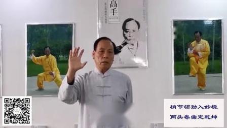 太极万能的手——2020年3月21日张志俊老师直播 标清(270P)-08-986