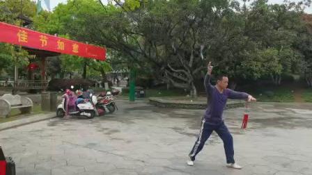 杨介锦32式