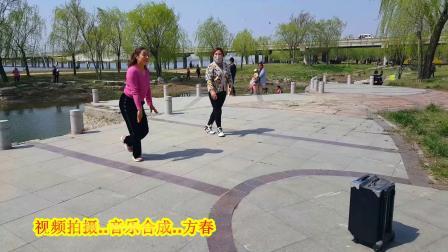 沂河郑霞广场舞【红枣树】
