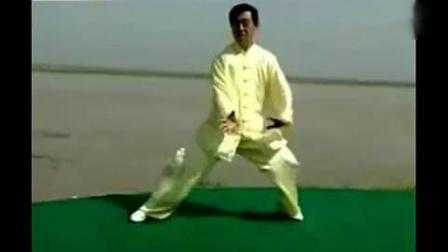 陈氏太极拳精要十八式