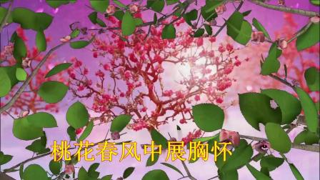 人面桃花相映红.mp4