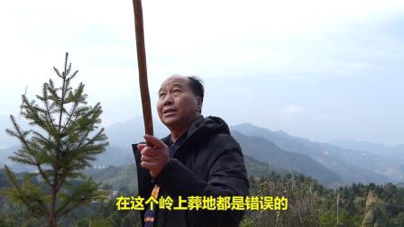 韦昭尤点评高山出大地,看法与其他人有所不同