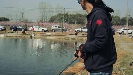年后的黑坑之行,再也不怕人多钓不到鱼的神秘方法,你学会了吗?
