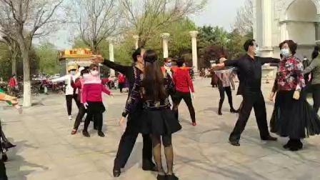 淄博植物园交谊舞慢四。录像:南老师