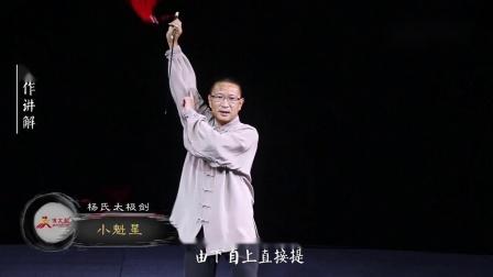 杨氏太极剑第14式-小魁星