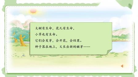 4月23日 一年级道德与法治 花儿草儿真美丽