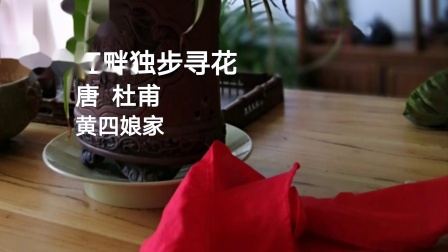 儿童古诗词朗读 江畔独步寻花