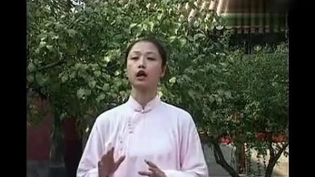 邱慧芳24式太极拳教学 ( 上 ) _标清_标清