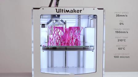 【Ultimaker盘点赏析】3D打印同材料支撑PLA龙模型