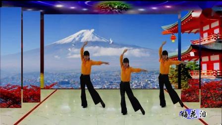 古典舞【梅花泪】
