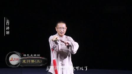 杨氏太极剑第19式-龙行势(三).mp4