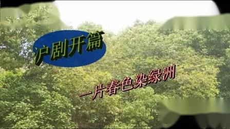 沪剧开篇:一片春色染绿洲