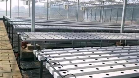 温室大棚PVC栽培管 方管蔬菜水培槽  无土栽培种植设备